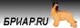 Бриар.RU - бриары Мохнатое Чудо & Ko, более 1500 фотографий, результаты выставок, щенки, спорт